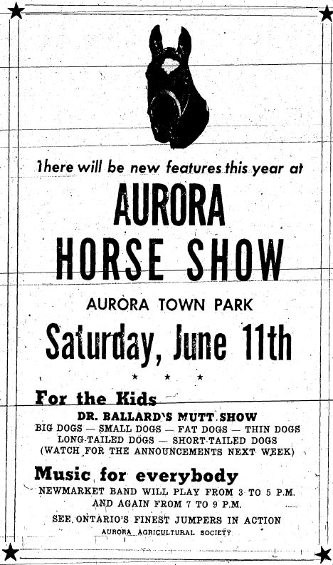 A black and white vertical advertisement for the Aurora Horse Show comprising mostly text below a photograph of a horse's head; ad framed with double lines and a black star at each corner