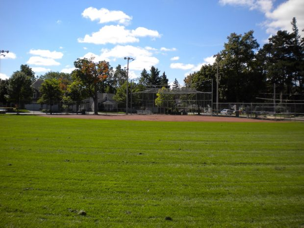 A colour image taken from the outfield of a baseball diamond facing toward homeplate. The majority of the image shows the grass of the outfield and the red dirt of the infield and the fencing behind it is visible in the background.