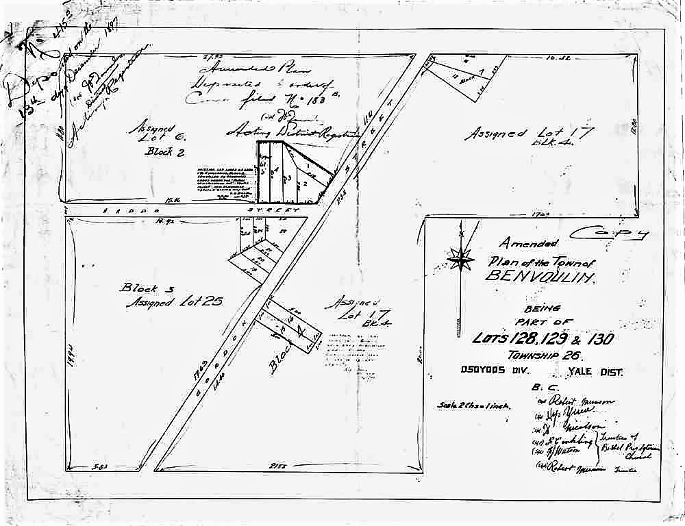 Black and white hand-drawn map of lot sections and roads.