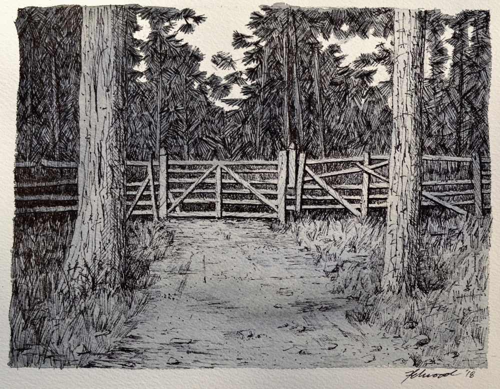 Ink drawing of a farm gate framed by two trees with a forest behind.