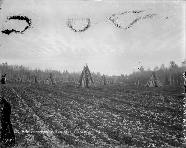 Black and white photo of teepee like thin logs standing on end in a plowed field.