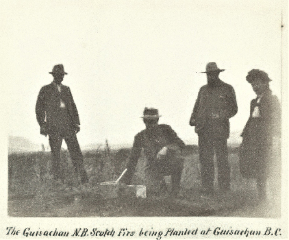 Black and white photo of three men and a woman in a field. The man second from the left is on one knee planting fir trees.