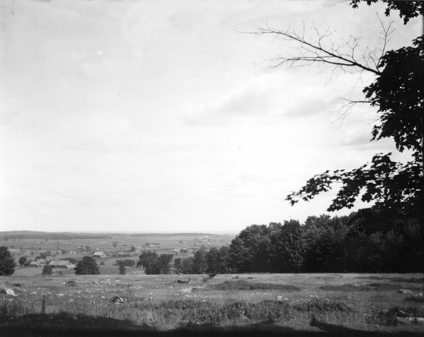 Black & white photograph of a landscape in summertime. In the foreground, a field is seen, with a cow in the middle distance. In the far distance is a plain with a few scattered houses and farm buildings.