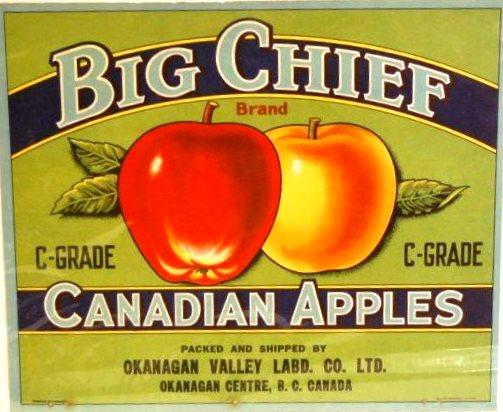 Photo en couleur de l'étiquette de caisse de pommes de la marque Big Chief. Le fond de l'étiquette est vert clair avec des parties bleu marine; l'inscription est en lettres bleu clair et noires. Une pomme rouge et une pomme jaune figurent au centre.
