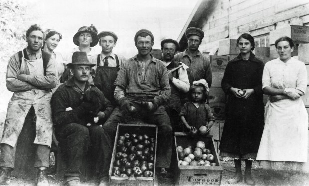 Black and white photo of six men, four women, and one very young girl outside. Behind them is a wooden building. Two wooden boxes of apples are in the foreground; one of the boxes is stamped Towgood, Oyama.