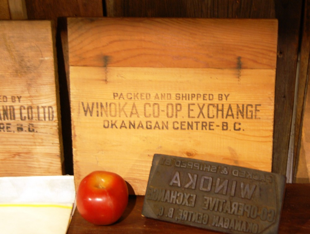 Colour photo of the end of a wooden packing box stamped Winoka Co-op Exchange, Okanagan Centre, BC. The box stamp and an apple are in front.