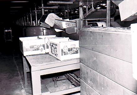 Photo en noir et blanc de plusieurs boîtes en carton posées sur une table à l'intérieur d'un édifice.