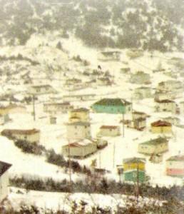 Photo d'hiver prise à Parker's Cove dans les années 70