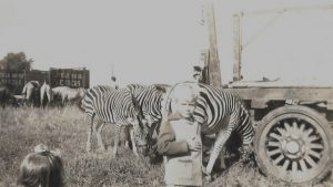 Black and white photo of small boy and girl in front of a group of zebras with Cole Bros. Circus logo on a transportation vehicle in the background