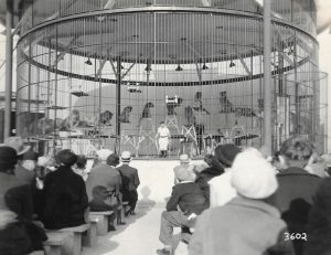 Black and white photo of circus tigers and lions in a large cage on elevated stands with a tamer ready to perform for seated audience