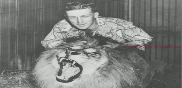 Black and white photo of young Bingo Hauser above his lion Simba, the lion has his mouth wide open and is showing sharp teeth