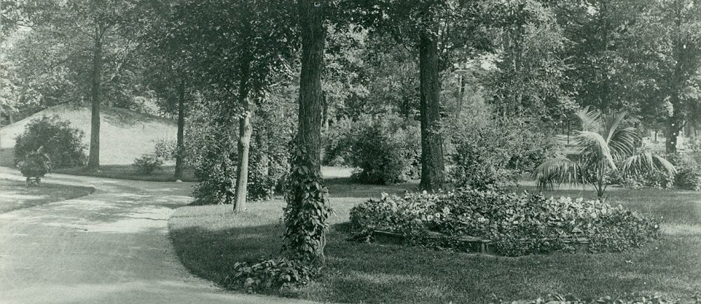 Black and white picture of a road surrounded by tree and luscious flower beds