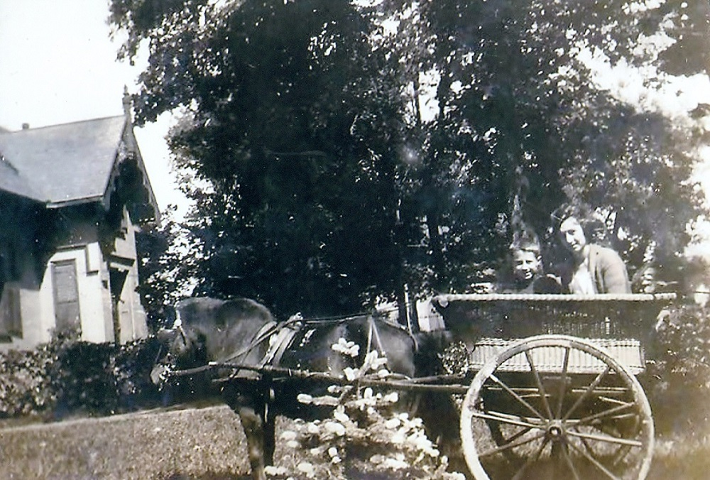 Black and white picture of horse and buggy. The buggy is made out of wicker and there's a man and child in the cart.