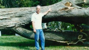 Colour picture of a man leaning on a massive tree trunk that was cut down