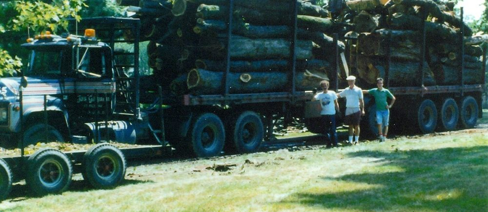 Colour picture of massive tree trunks on a truck bed with three men standing in front o the truck