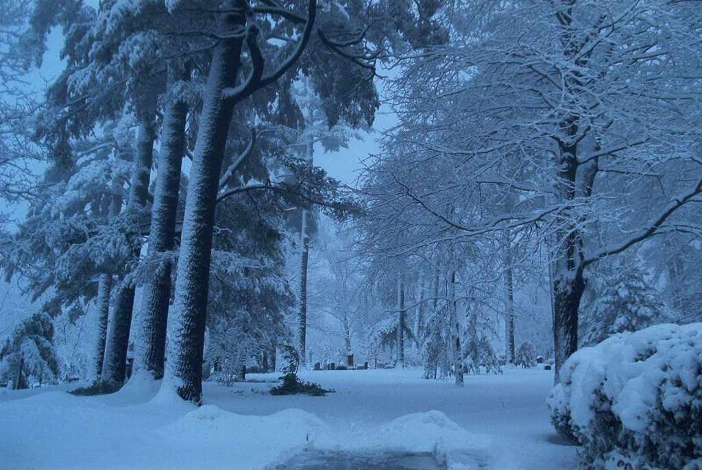 cemetery winter scene headstone buried under snow