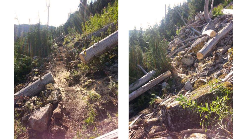 Two photos showing the before and after of trail construction work done to the trail to Watersprite Lake.