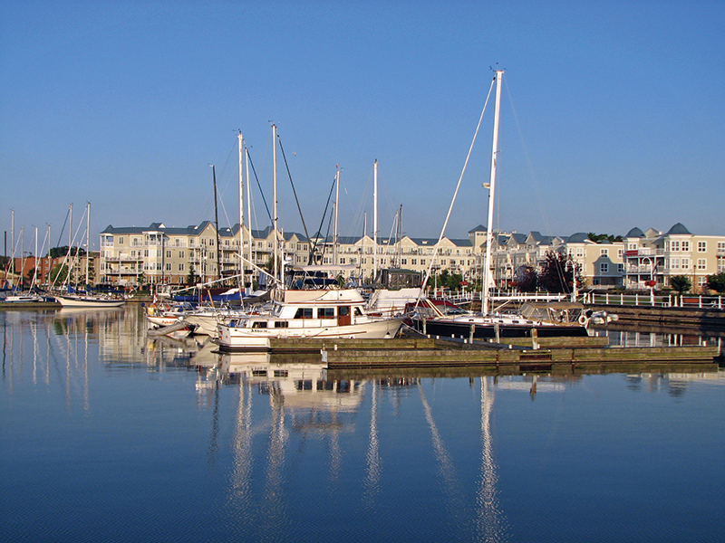 colour photo with blue sky above and blue water below.  Between are numerous sailing ships with their empty masts reflected in the water, and white condominiums in the background