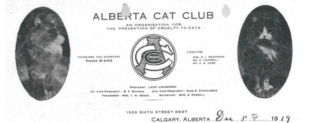 Letterhead for the Alberta Cat Club showing logo and two images of cats