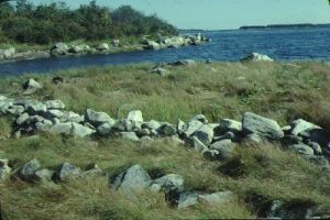 A dyke in Lawlor's Point