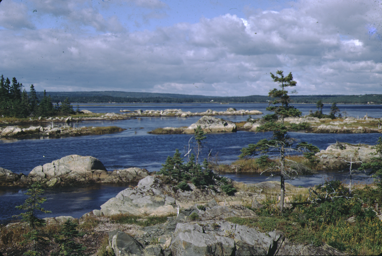 Rocky islands in Cole Harbour