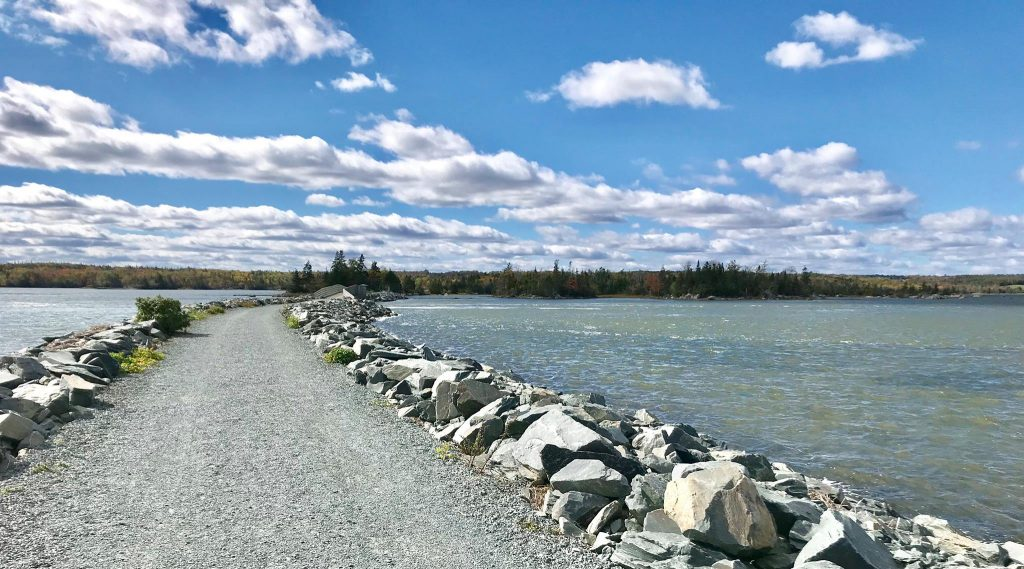 The Salt Marsh Trail and the harbour on a sunny day