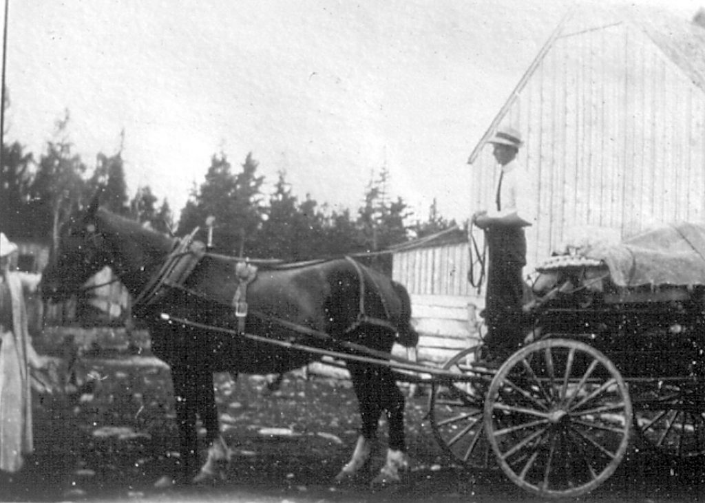 Seymour LaPierre stands with his horse and wagon