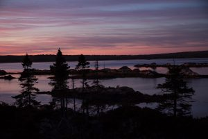 Small islands and trees in the Cole Harbour Salt Marsh at dusk