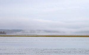A bridge over the salt marsh and fog