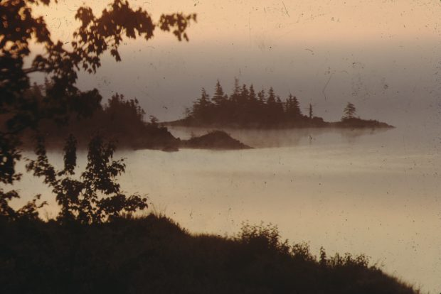 Mist on the Cole Harbour salt marsh