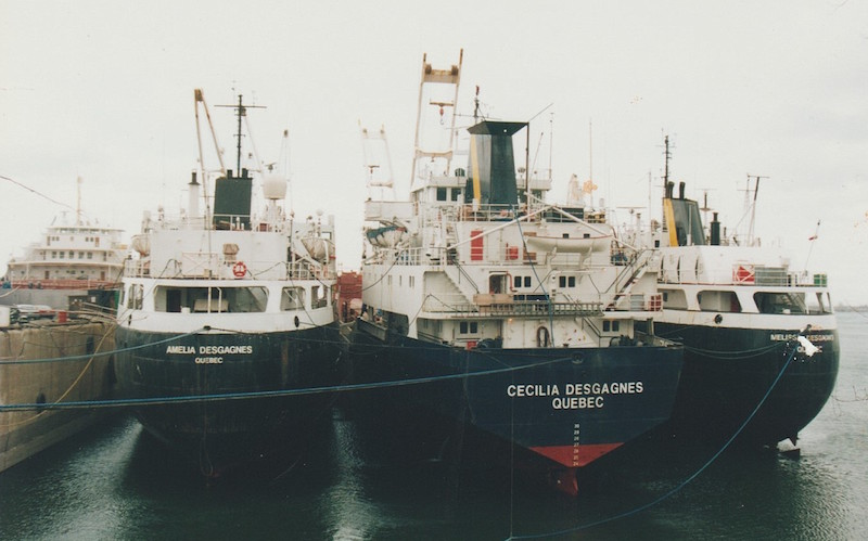Colour photograph. Three steel ships at dock on a cloudy day. They are tied together with blue cables. Their hulls are navy blue and they all have a yellow stripe painted on their chimneys. Their names are printed on their hulls, from left to right: Amelia Desgagnes, Cecilia Desgagnes and Melissa Desgagnes.