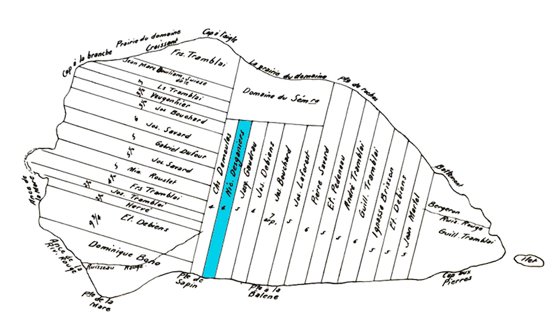 A black and white map of an island. The island is divided into rectangular strips of land. Each parcel is identified with the name of its owner. In the lower centre portion of the image, a strip of land is highlighted in blue. This land belonged to Nicolas Desgagnés.