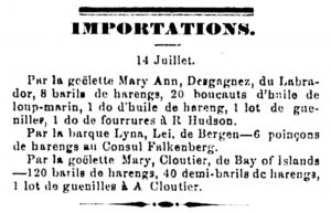 A newspaper article describing the cargo of Zéphirin Desgagnés' schooner, the Mary Ann.