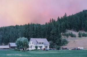 : Maison blanche avec autos, camions et une remorque pour chevaux tout près. Derrière les arbres le ciel est de couleur rosée à cause du feu.