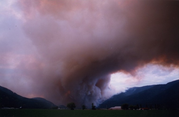 Fire and smoke coming from the hills and valley floor. Farm in foreground. Sky is pink with smoke and fire.