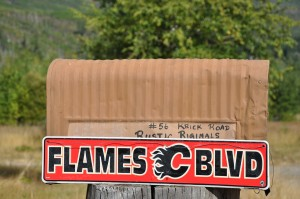 """A rural mailbox with a sign attached reads """"Flames Blvd."""""""