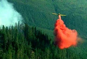 Aeroplane dropping fire retardant on a forest fire.
