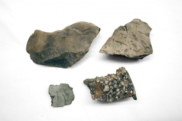 Four grey stone tools, not yet worked into a final form