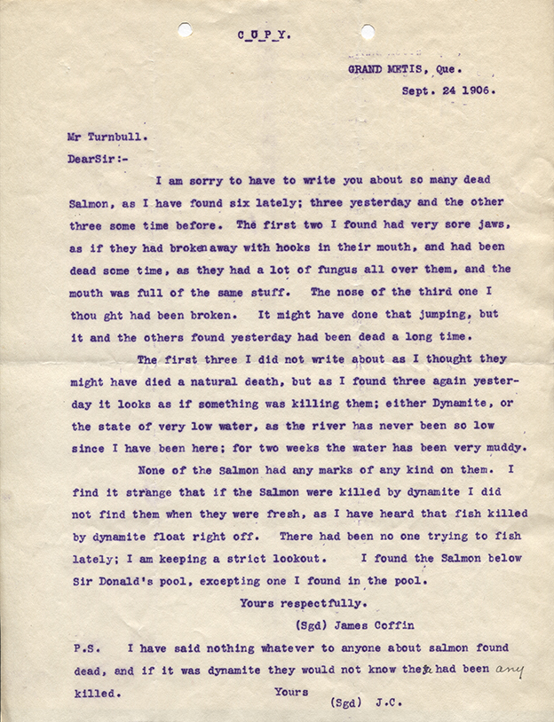 Letter from James Coffin to Robert Wilson Reford, concerning the state of the salmon on the Metis River on september 24, 1906.