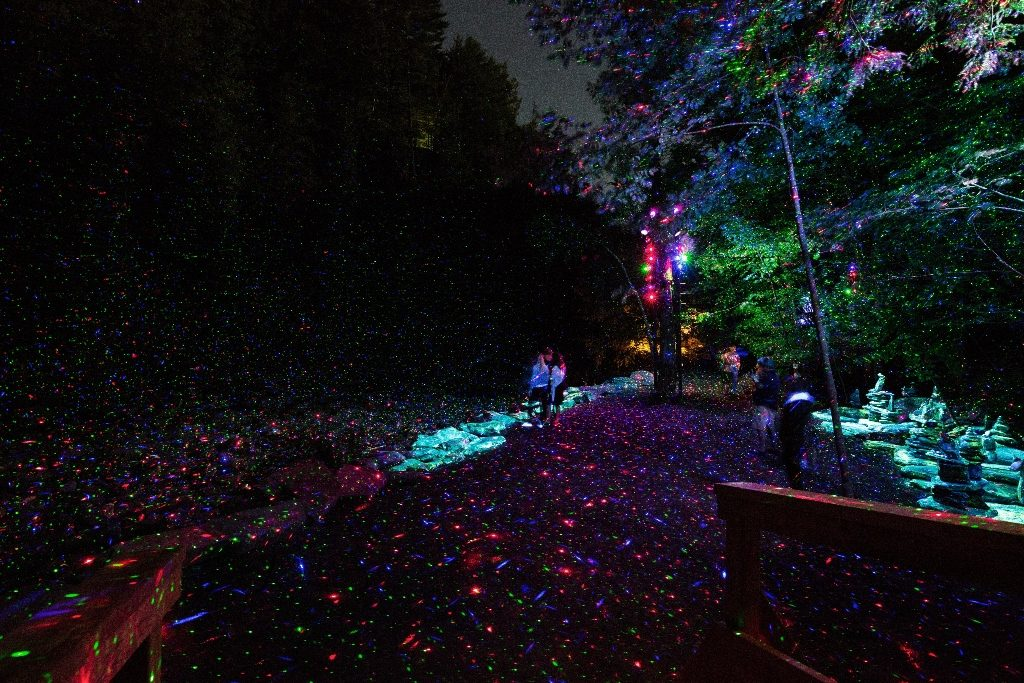 Colour photograph of visitors in a forested setting lit by red, blue, green and purple lighting.