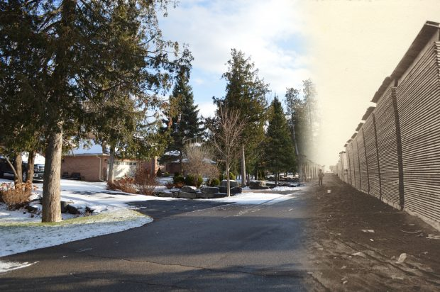 On the left a contemporary photograph of a subdivision, on the right a lumber piling ground.