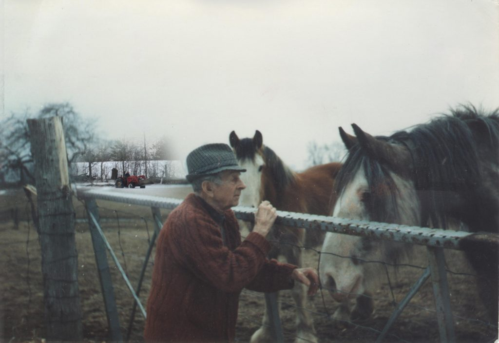 An elderly farmer standing at a steel gate, rubbing the nose of his of horse. In background a tractor skids firewood.