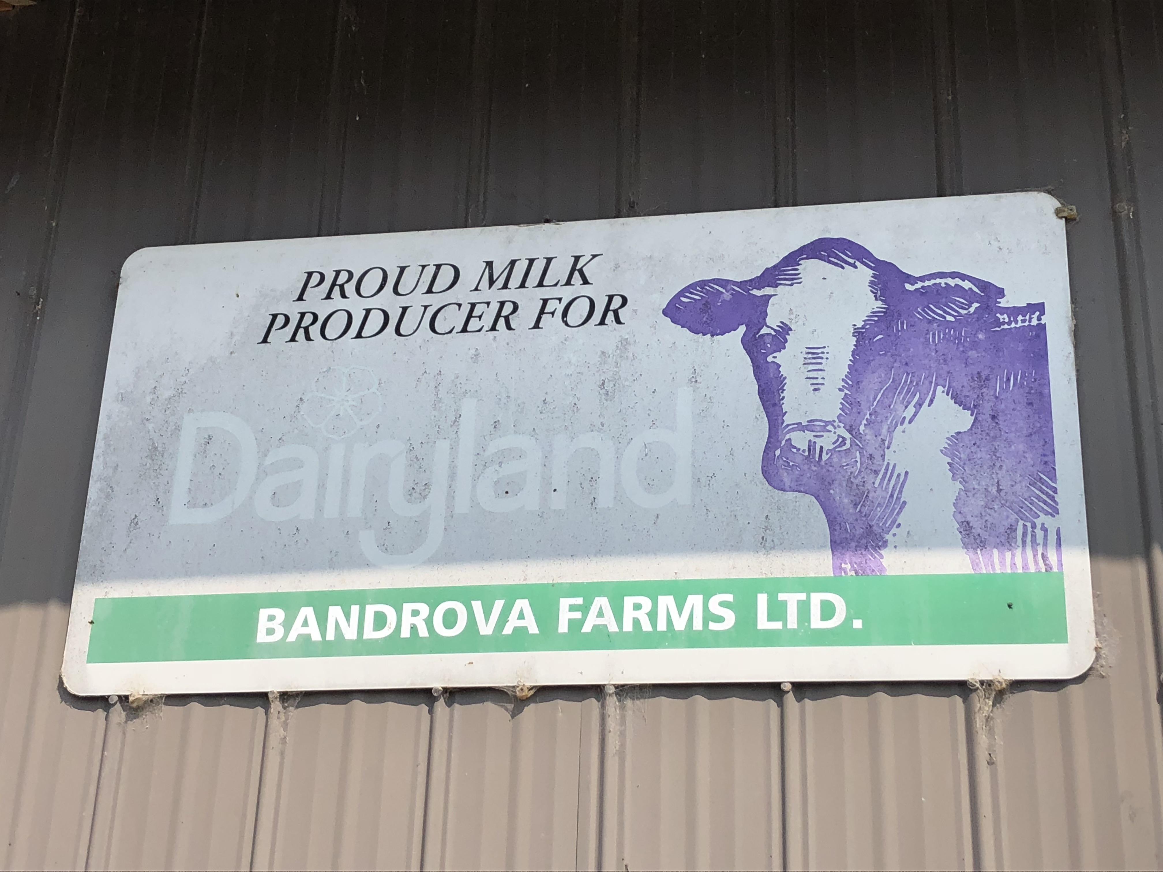 Colour photograph of a Dairyland sign at Bandrova Farms Ltd.