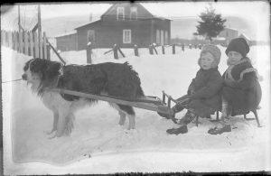 Dog sled and children