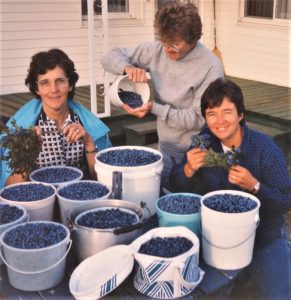 Colour photo of three women in front of several blueberry containers.
