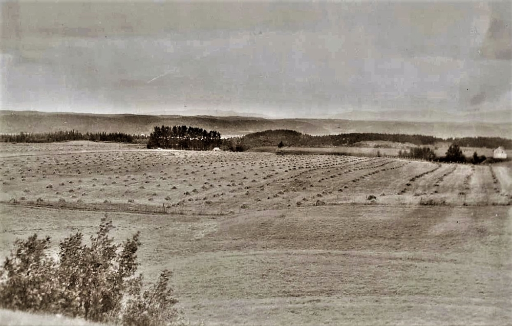 Black and white photo of rolling hills.