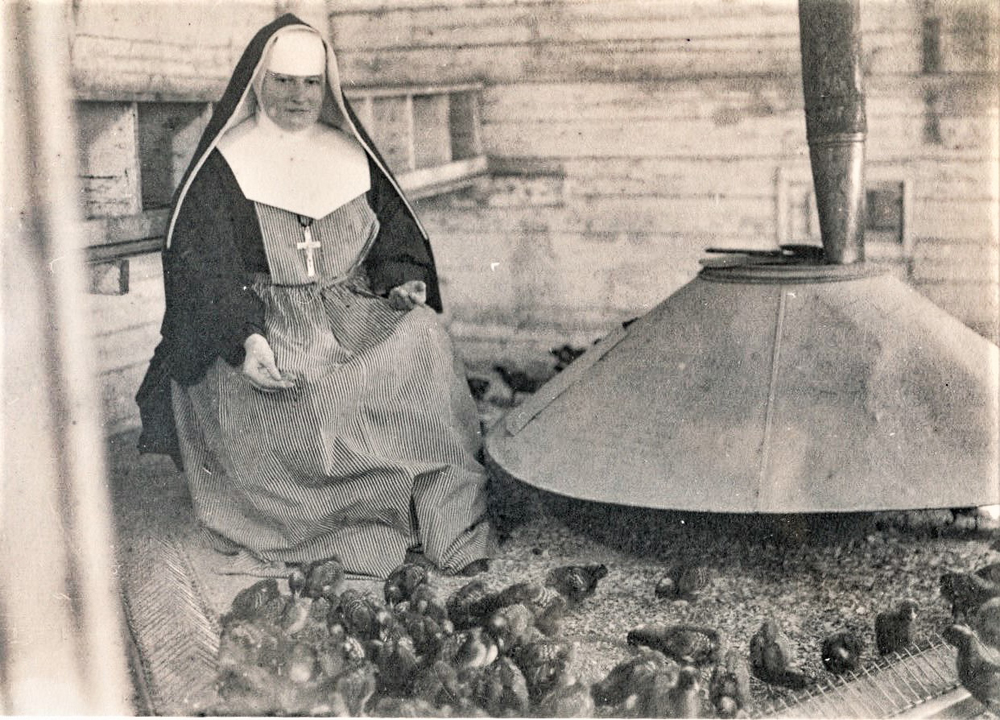 Black and white photo of a nun wearing a veil, cross, and apron, feeding chicks.