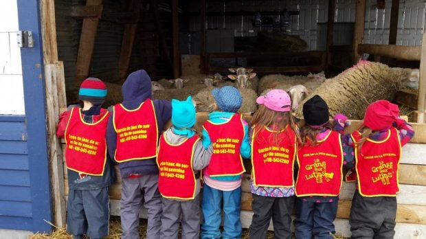 Several children looking at ewes in the barn. They are all wearing red bibs with the words: La grange aux lutins.