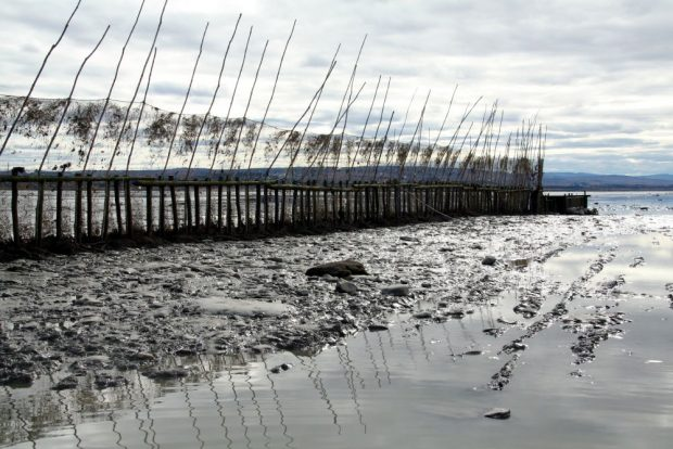 A 95-m barrier stands on a slightly elevated area of gravel and mud. Made of fishing nets held in a vertical position by wooden poles, it extends to a collecting box, also made of wood. The cloudy sky and the poles holding the nets are reflected in the still water in the foreground.