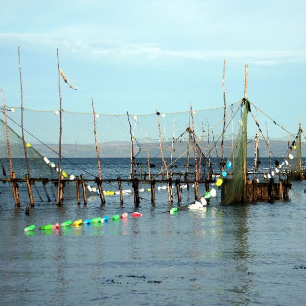 Large fixed nets mounted in a vertical position using wooden stakes and poles form barriers extending to a wooden container in the water. Other nets are starting to float thanks to empty multi-coloured plastic bottles attached to their edges.